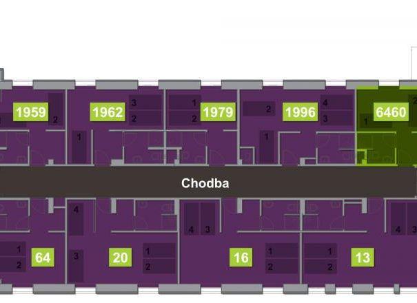 Room 6460 - Eliška Klučinová